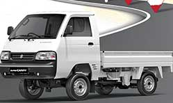 Maruti Suzuki Super Carry dominates mini truck segment in India