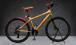 Godrej & Boyce launches Bambusa bamboo frame bicycles