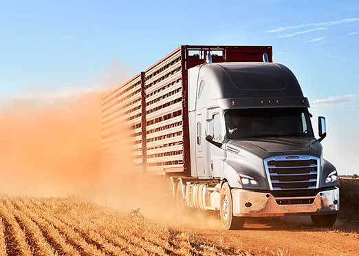 Daimler new Freightliner Cascadia now in Australia, New Zealand