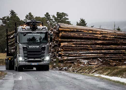 Trucks, timber and tricky terrain: why Scania is the answer
