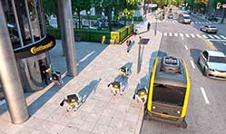Continental robots show their delivery prowess